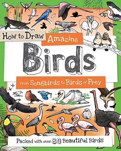 How to Draw Amazing Birds: From Songbirds to Birds of Prey (How to Draw Series)