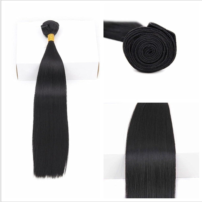 読書青写真最小化するKoloeplf ブラジル 女性 耐熱 長い ストレート ウィッグ ヘア カーテン 非染色(70g / 100g) 18 インチ 至る 10インチ ブラックヘア (サイズ : 18inch(70g))