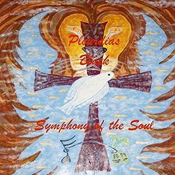 Symphony of the Soul