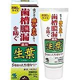 生葉(しょうよう) お試しサイズ 歯槽膿漏を防ぐ 薬用ハミガキ 和漢ハーブの香味 40g 【医薬部外品】