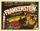 Frankenstein Poster Drucken (35,56 x 27,94 cm)