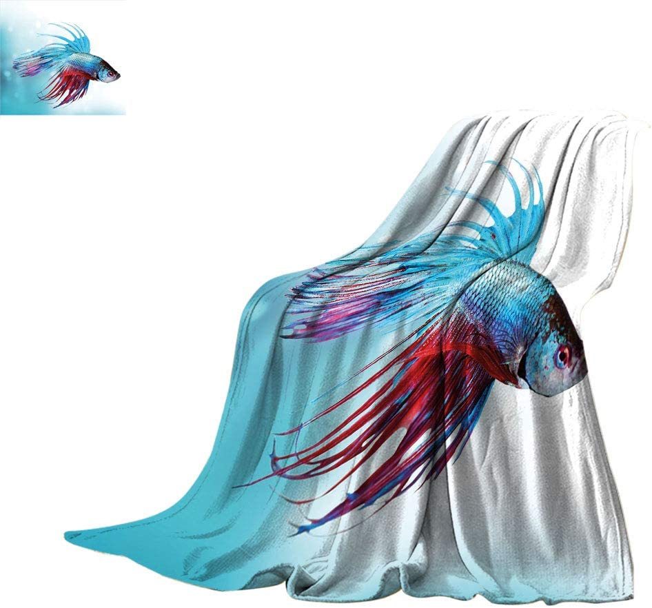 Popular shop is the lowest price challenge Exotidecor Aquarium Warm Bed Brand Cheap Sale Venue Blanket Fighting Siamese Fis Betta
