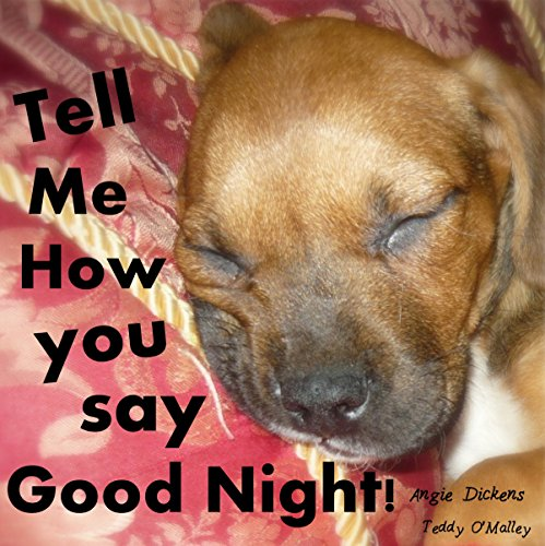 Tell Me How You Say Good Night audiobook cover art