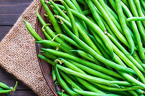 BIO - Haricot vert'Slenderette' - graines certifiées biologiques - graines