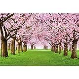 GREAT ART® Mural De Pared ? Mural De Flor De Cerezo ?Flores Primavera Jardín Planta Bosque Parque Naturaleza para Florecer Árbol Avenida Foto Tapiz Y Decoración (210x140 Cm)