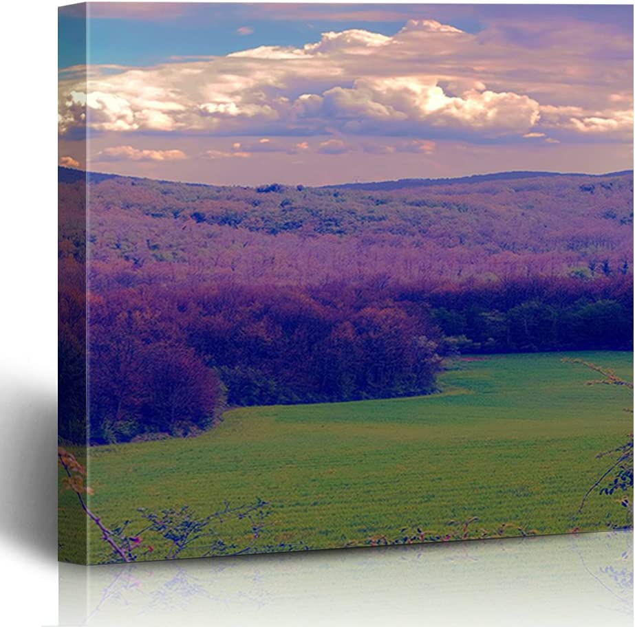 FAREYY Canvas Prints Landscapes Hilly Wall Decor Art Landscape Limited Manufacturer OFFicial shop price P