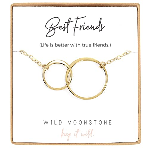 1a8f67d44d58 Wild Moonstone Best Friend Necklace - 2 Interlocking Infinity Circles -  Friendship Gift Jewelry - Dainty