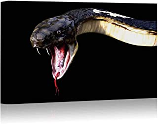 Close Up of 3D King Cobra Snake Attack Isolated on Black Background Canvas Art Wall Decor,Cobra Snake Painting Wall Art Picture Print on Canvas,12