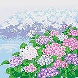 綿小風呂敷(50cm)・日本の四季 夏(紫陽花)6枚購入で送料無料