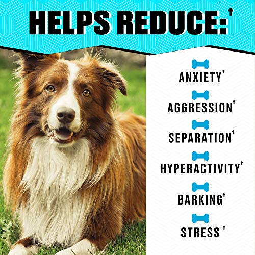 Helopssa Hemp Calming Treats for Dogs