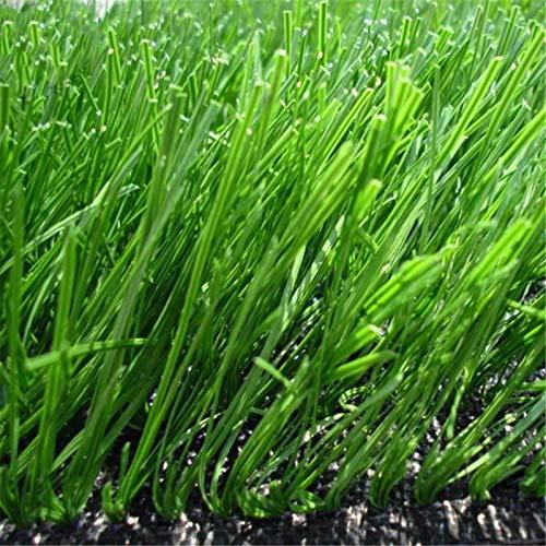 KINGDUO Egrow 500 Pcs/Pack Evergreen Grass Seeds Evergreen Grass Semente Plant Evergreen Garden Lawn Grass