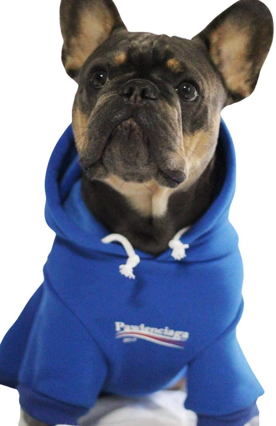 Dog Outfit for Dog Cat Puppy Small Medium Stylish Streetwear Blue Dog Sweatshirt Tracksuits ChoChoCho Dog Hoodie Pet Clothing Cotton Cats Hoodies
