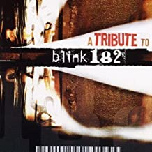 A Tribute To Blink 182