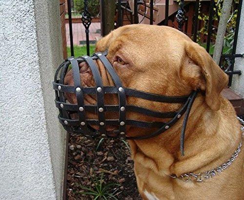 Bozal para perro de piel para Dogo de Burdeos de luz y Bullmastiff Y Otros
