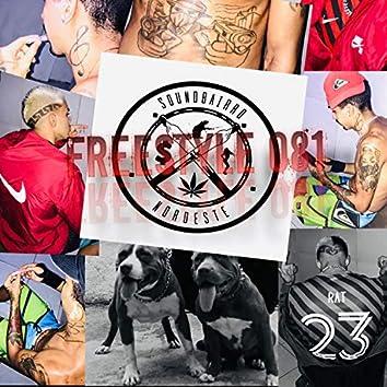 Freestyle 081