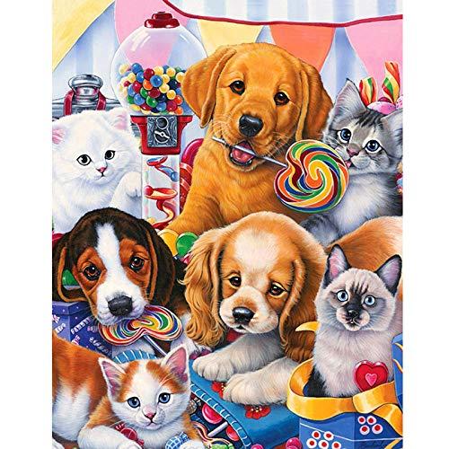 Diopn 5D Diamant Schilderij Volledig Vierkant/Ronde Diamant DIY Borduurwerk Cross-Stitch Honden met Snoepjes Strass Mozaïek Schilderij Katten Gift(Rond Diamant 40 * 50)