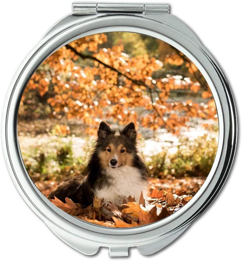 Yanteng Mirror Makeup Max 90% OFF Dog 1 year warranty Sheltie Autumn Tree Pocke Lying
