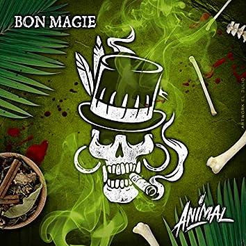 Bon Magie