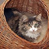 2-9-18 GalaDis Katzenhöhle Weide mit hellem Kissen / Katzenkorb / Katzenbett, sowohl für Katzen als auch kleine Hunde