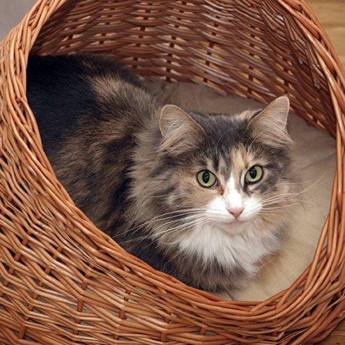 2-9-18 Katzenhöhle / Katzenkorb aus Korbweide mit Kissen