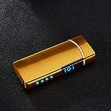 Haioo Encendedor Eléctrico Recargable con USB, Resistente al Viento, Mechero Eléctrico de Doble Arco con Indicador LED de Batería, Sensor Táctil, Sin Llama, Cigarrillo (Dorado)