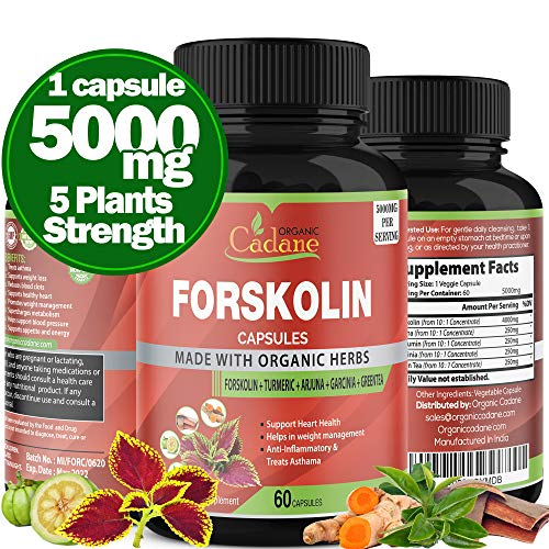 Organic Cadane Forskolin