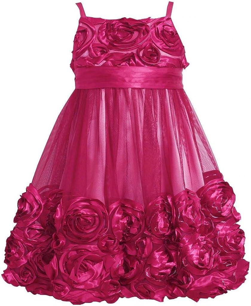 Bonnie Jean Little Girls 2T-6X Rose-Pink Bonaz Rosette Mesh Bubble Dress