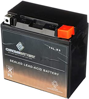 Rechargeable Replacement YTX14L-BS High Performance Power Sports Battery