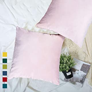 YINFUNG Pink Velvet Pillow Covers Pastel Baby Pink Blush Throw Pillow Cover 18x18 Decorative Pale Pink Toss Pillow Covers Soft Light Pink Girls Gift Couch Pillow Covers Dusty Rose Sofa 2 Pack
