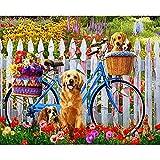SANYOCZH Pintar por Numeros Adultos, Niños, DIY Paint by Numbers, Cuadros para Pintar por Numeros, Incluye Lienzo, Pincel, Pigmento Acrílico, Decoraciones para El Hogar (20'*16', Perro y Bicicleta)