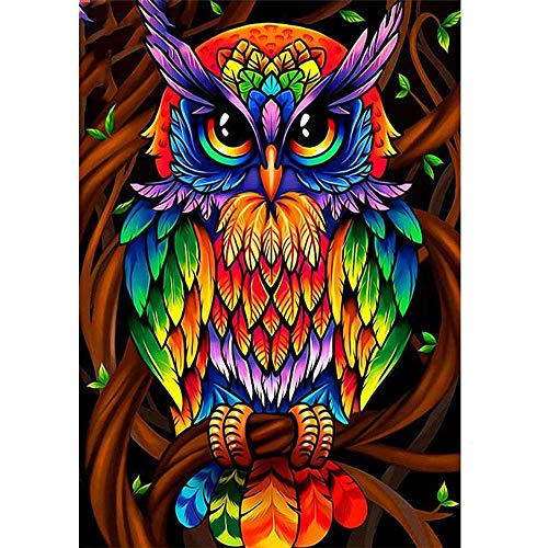 Diamond Painting Kits for Adults and Kids, Full Drill Round Rhinestone Paint with Diamonds,Cross Stitch Embroidery Art Perfect for Relaxation and Home Wall Decor (Cool owl, 12X16inch)