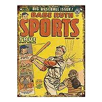 Babe Ruth Sports Magazine 金属板ブリキ看板警告サイン注意サイン表示パネル情報サイン金属安全サイン