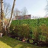 Seto Artificial Huertos urbanos Vallas decorativas Valla de jardín Artificial Ivy Hedge tejido en rejilla de plástico Mat Valla de privacidad de jardín Ivy Hedge Vallas decorativas Pantalla de priv
