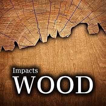 Large Wood Log Drop Impact onto Gravel Bag