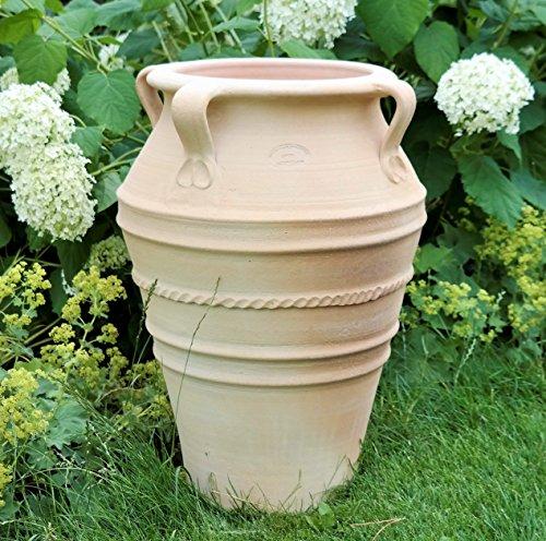 Kreta-Keramik handgefertigte Terracotta Amphore mit Henkel | absolut frostfest und witterungsbeständig | 50 cm | Pflanzgefäß für Innen, Garten und Terrasse Balkon Datura