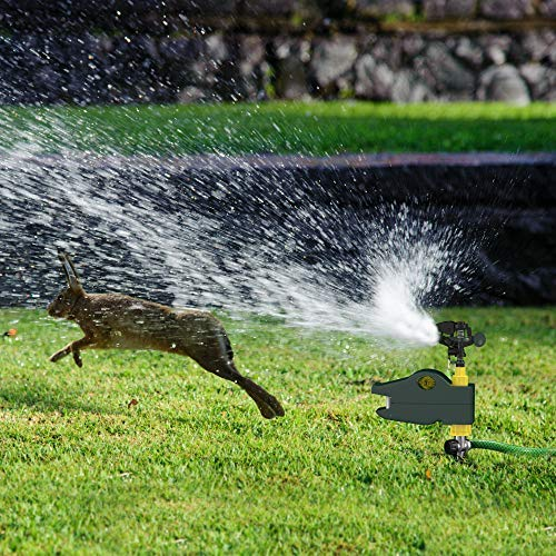 Hoont Motion Activated Jet Blaster - Yard and Garden Animal Rodent Repellent