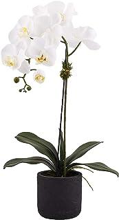 وعاء زهور للأماكن المغلقة من ليتل جرين هاوس، باللون الأبيض