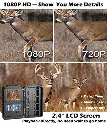 X-Lounger Wildlife Trail Camera Trap