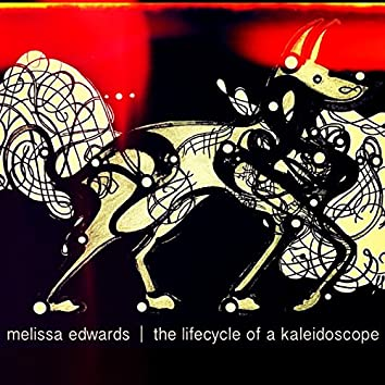 The Lifecycle of a Kaleidoscope