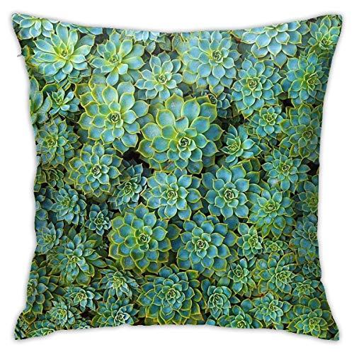 brandless Greatest Showman Rewrite The Stars Watercolour Galaxy Bedroom Sofa Decorative Cushion Throw Pillow Cover Case 18 X 18 Inch