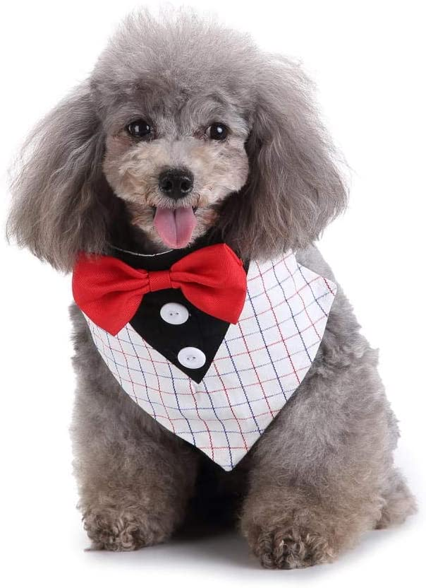 HaiMa - Collar para perro con diseño de smoking con lazos y mariposas ajustables para la fiesta de boda – M
