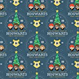 Harry Potter Christmas Special Baumwollstoff - 0,5 Meter -