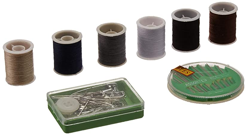 Allary Home & Travel Sewing Kit in zipper case