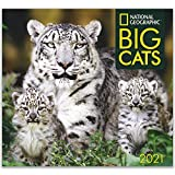 National Geographic Big Cats 2021 Wall Calendar