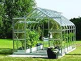 Gartenwelt Riegelsberger Gewächshaus Diana - Ausführung: 9900 ESG 3 mm Alu, Fläche: ca. 9,9 m², mit 4 Dachfenster, Sockel: 2,54 x 3,79 m