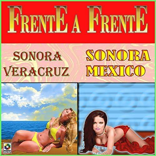 Sonora Veracruz & Sonora Mexico