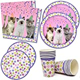 Kitten Party Supplies Set 24 9' Paper Plates 24 7' Plate 24 9 Oz Cups 50 Luncheon Napkins Kitty Birthday Decorations Paw Cat Girl Kids Themed Disposable Tableware Party Favor Good Set By Gift Boutique