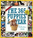 365 puppies a year. Cani 2008 (calendario a muro 365 giorni) (Picture-A-Day Wall Calendars)