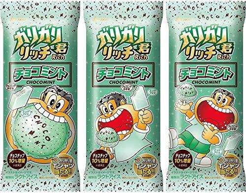 赤城乳業 ガリガリ君リッチ チョコミント100ml×24袋