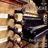 Anima aurea bohemiae (Loreto Organ, Prague)